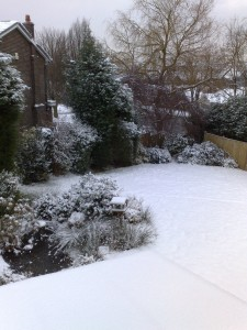 snow-day001
