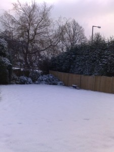 snow-day003