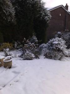 snow-day004
