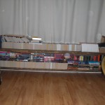 shelf-under-the-window-master-bedroom-most-of-the-tbr-there-tripple-shelved